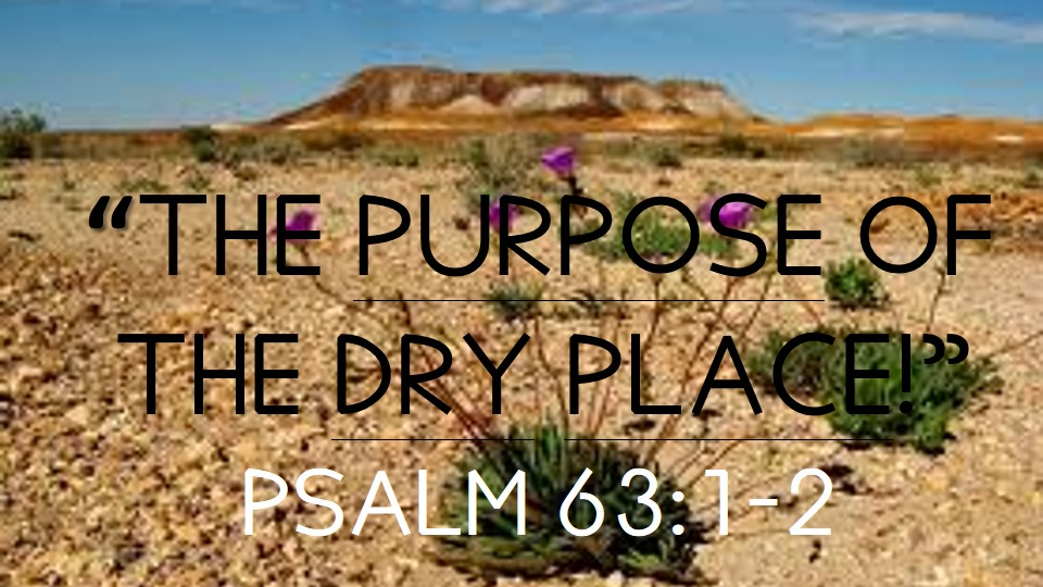 The Purpose of the Dry Place!